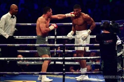 Хирн: ежели Кличко невернётся, следующий бой Джошуа будет сПулевым